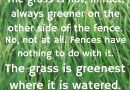 The grass is greenest where it is watered… Fences have nothing to do with it…