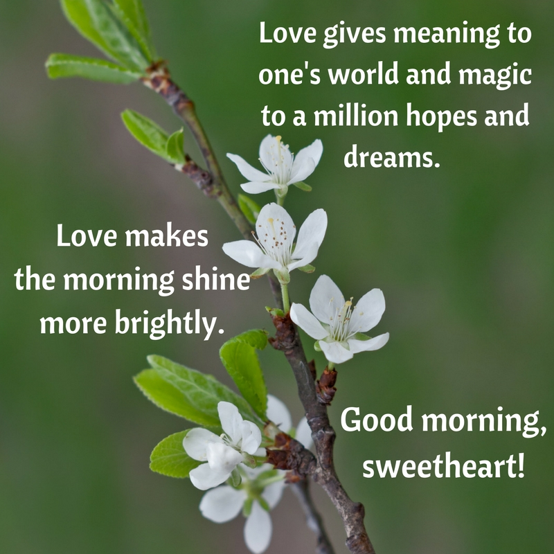 Love gives meaning to one's world