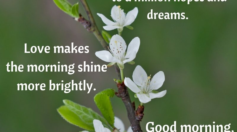 Good Morning Quotes Archives Words Have Power